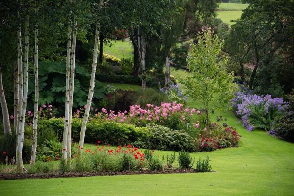 Сад Maple Glen в Новой Зеландии -2