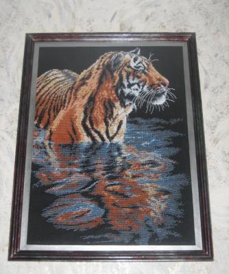 Купающийся тигр