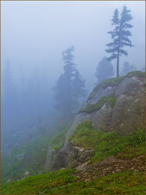В тумане голубом