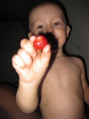 Илюша любит бабушкину клубнику...