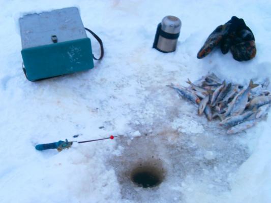 """""""последняя"""" рыбалка в 2012г"""