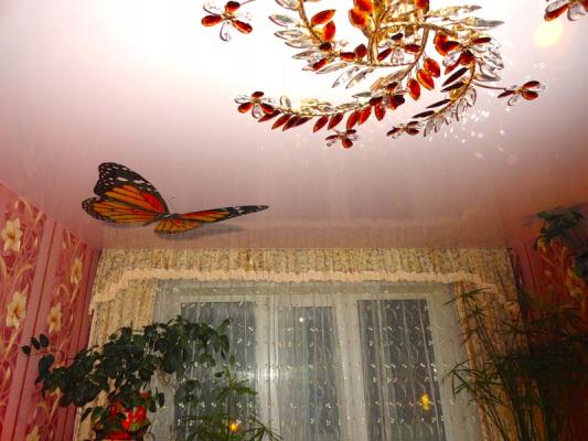 Бабочки на потолке - 3