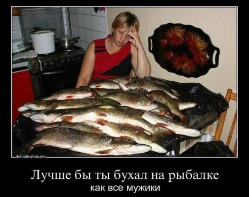 Прошу прощения!!!  фото из интернета!!! Но как рыбак, скажу жизненно!!!