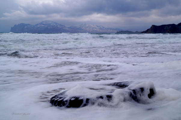 покрышка от Нептуна