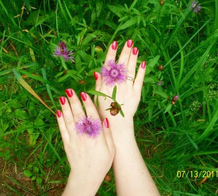 цветы и ручки)
