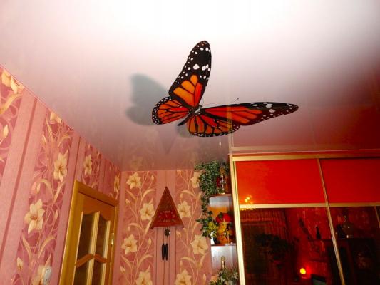 Бабочки на потолке - 5
