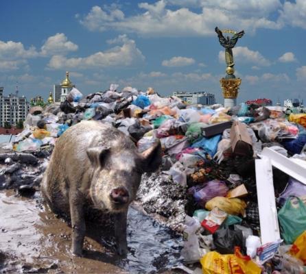 Киев 2014 г. Майдан. Столица Украины. Спасибо Львову за бардак.