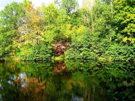 Середина осени.