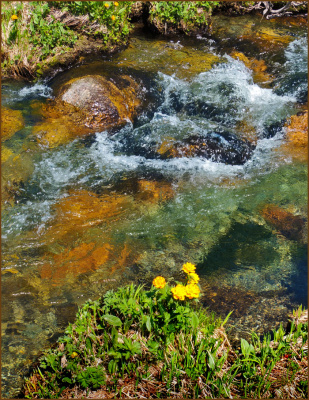 Ергаки, чистая вода