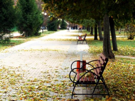 Осень лавка
