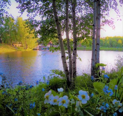 Весна и цветы земляники