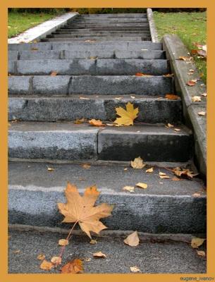 Осень, лестницы, листья