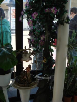 В том же цветочном магазине...