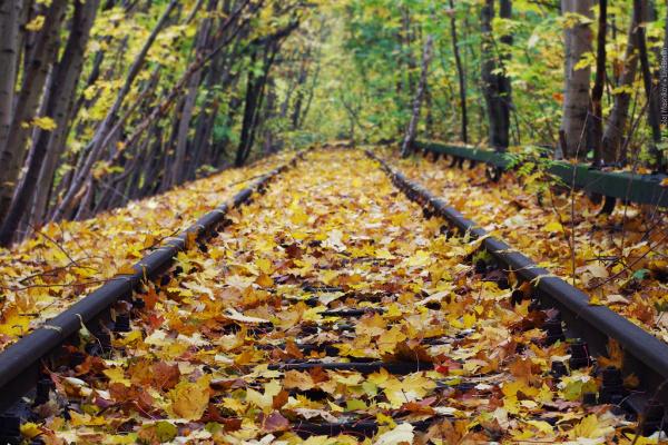 Осень в Берлине
