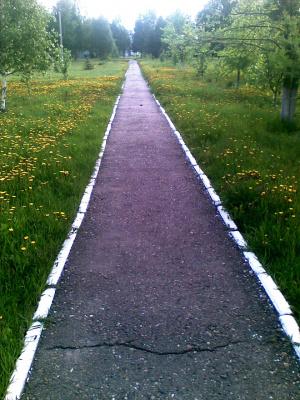 Путь, который выбирает нас