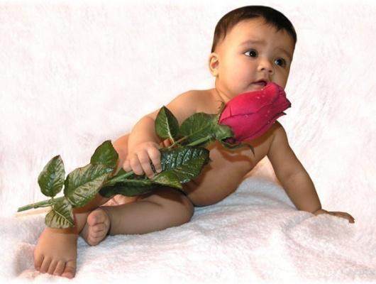 малыш и роза