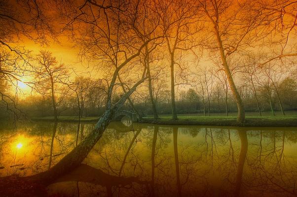 Reflection of a soul