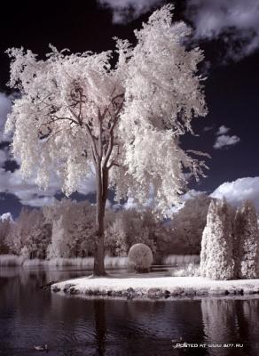 1242383648_fantastic-landscapes-photographer-rachel-bilodeau
