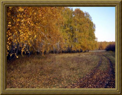 Осень золотая!!!