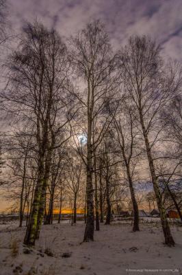 Ярославская область. Родные места. Зима