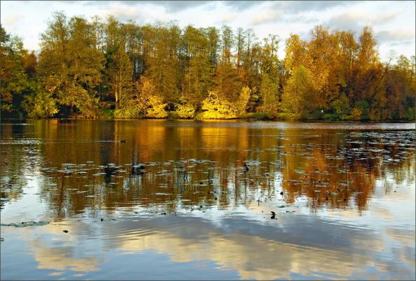 Осенняя пора, очей очарованья