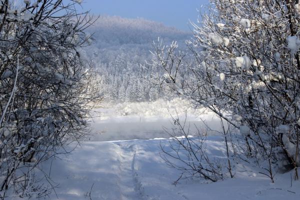 Здесь не замерзает река, рыбное место.