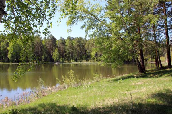 Озеро. Сибирь, Красноярский край
