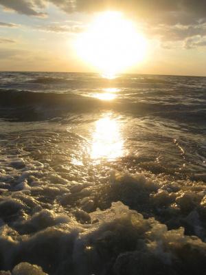 Азовское море   июнь 2013
