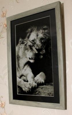 Львы - Верность