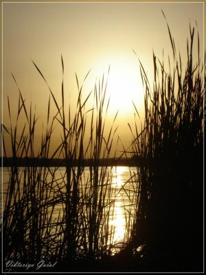 Захід сонця на Дніпрі