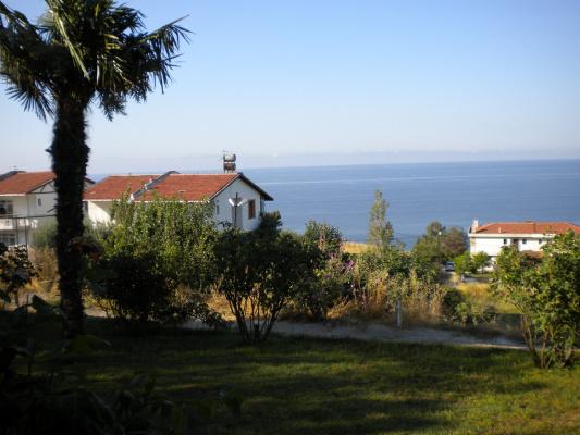 берег турецкий