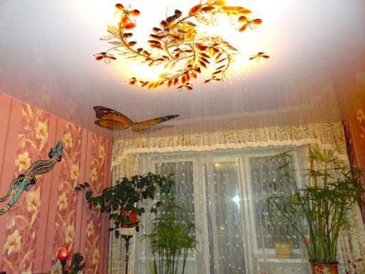 Бабочки на потолке - 6