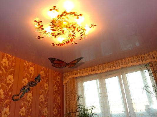 Бабочки на потолке - 9