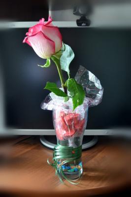 Роза в шоколаде