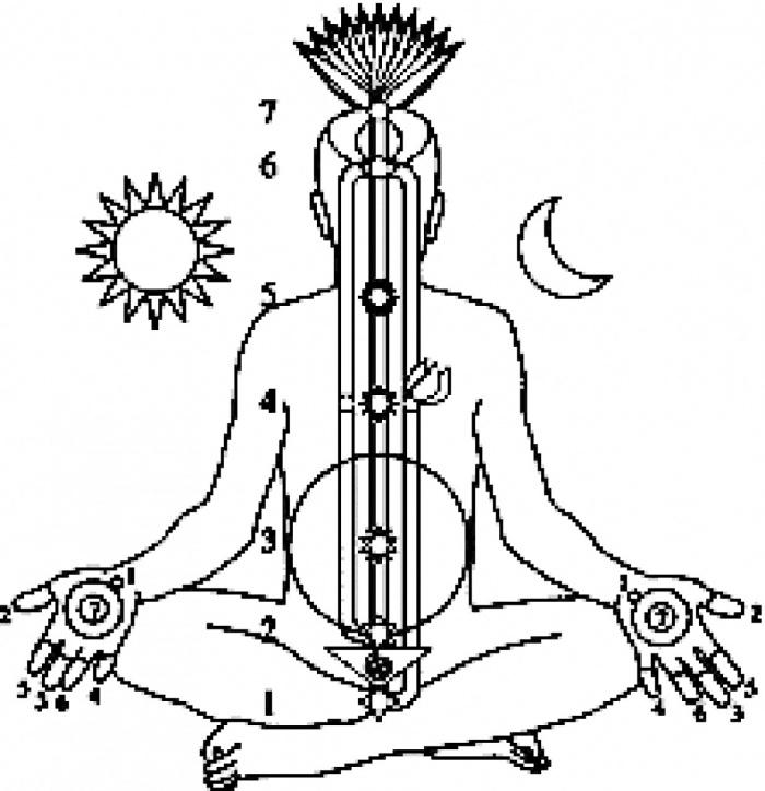 seks-v-sekte-sahadzha-yoga