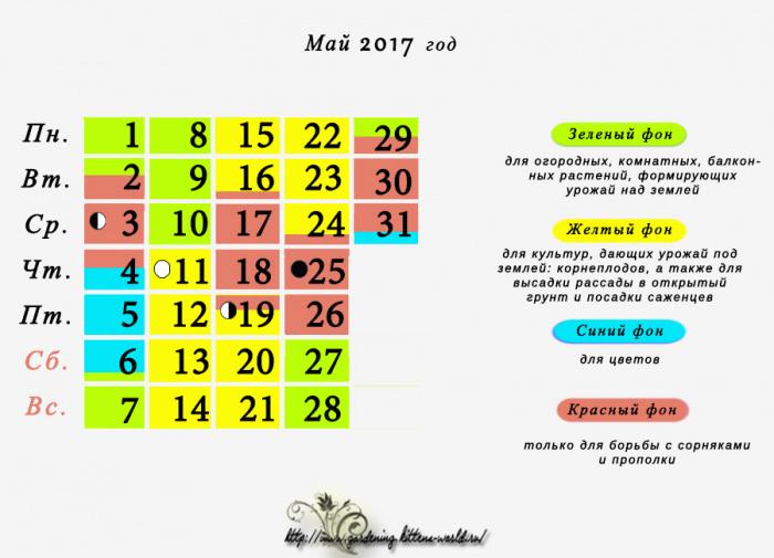 Лунный календарь 2017-2018 посадка огурцов