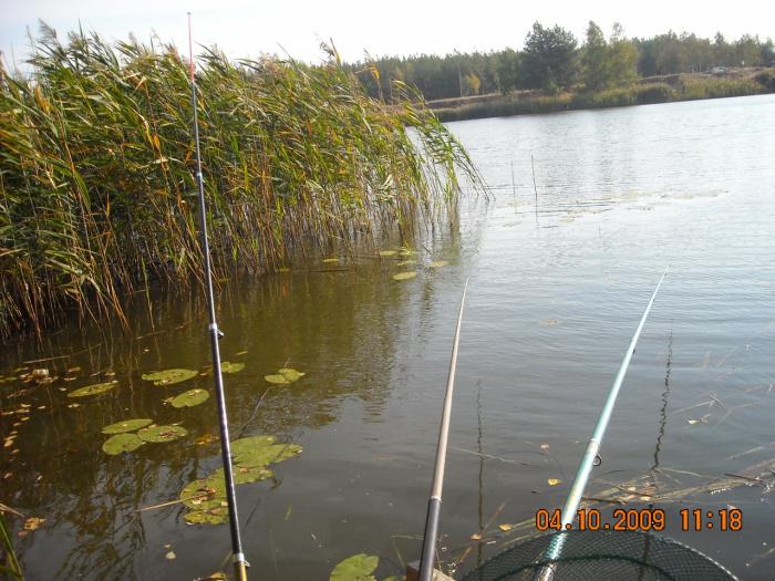 все для рыбалки на обводном