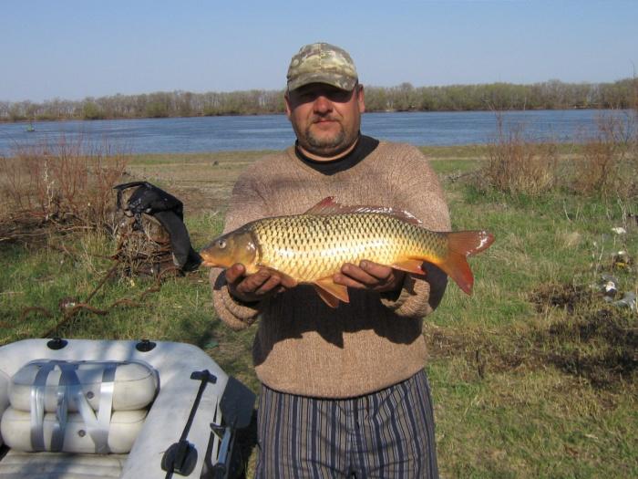 рыбалка в есино видео