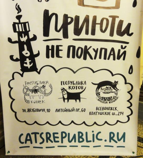 Адреса приютов для животных в Санкт-Петербурге , где можно взять себе друга .