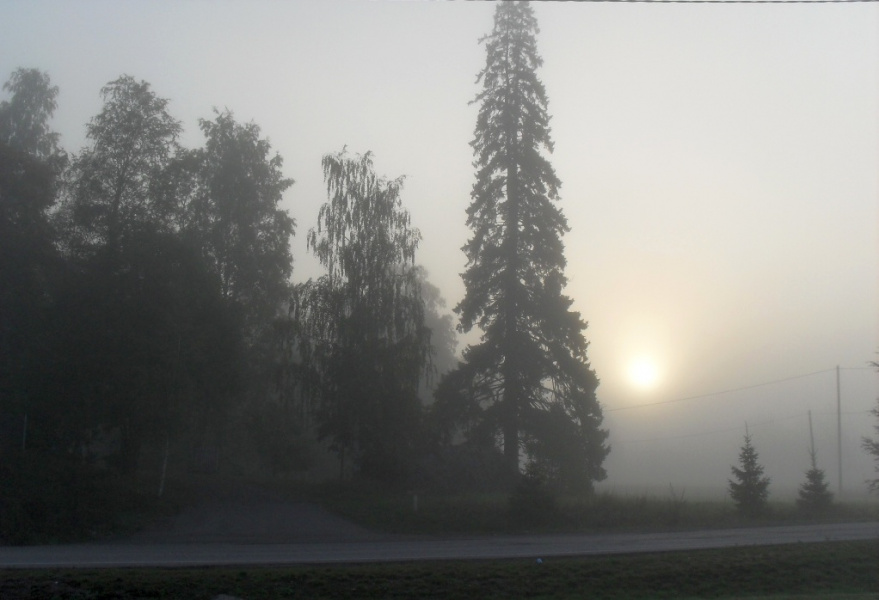Утро туманное ...