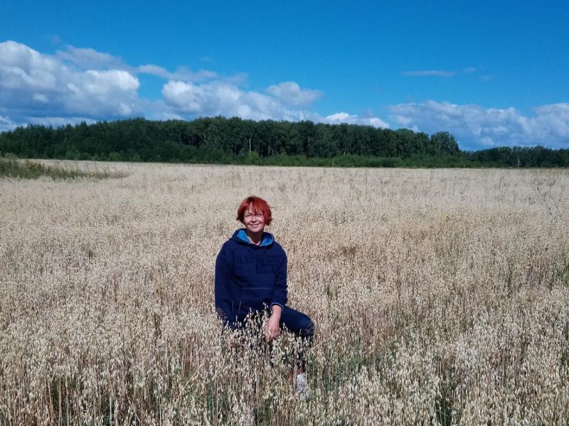 На Климушинском поле