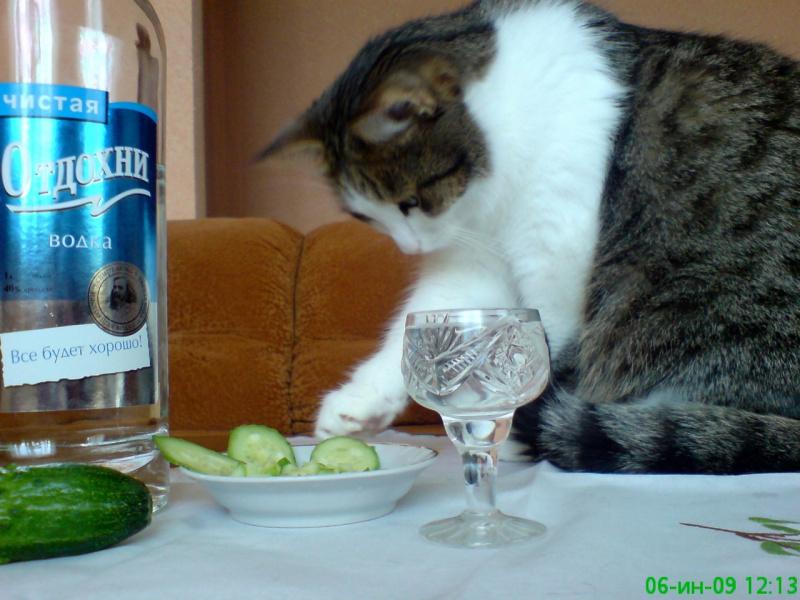 Випить-выпили,теперь надо закусить..