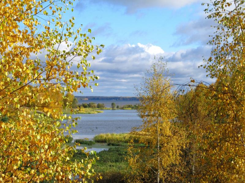 Осенняя сказка октября. Чабышевка.