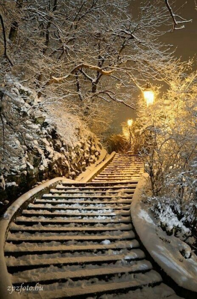 Лестница в снегу.Парк.
