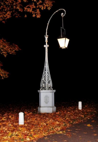 Ночь . Улица . Фонарь .