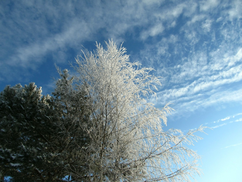 Зимнее очарование!