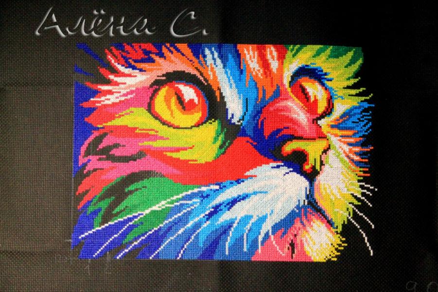 Кот радужный вышивка крестом