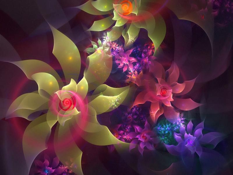 Flores 3D