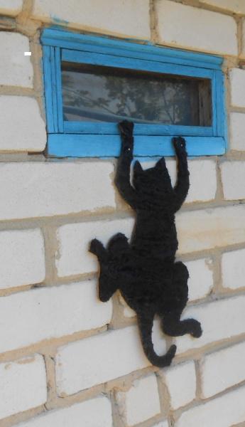 Любопытный кот.