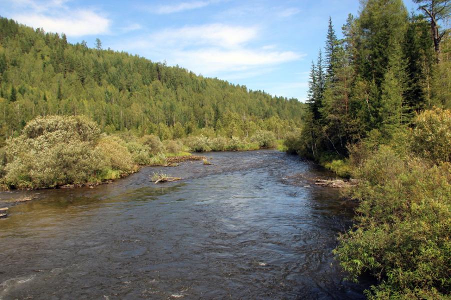 Таёжная речка